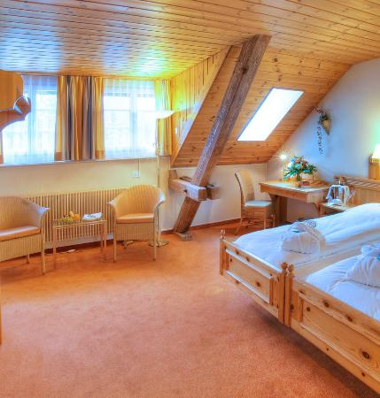 Sunstar Alpine Hotel Flims: Hotel Sunstar Flims DZStandard