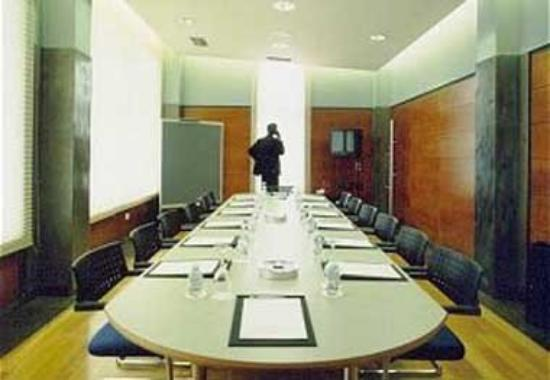 Hotel Ruta Jacobea: Conference Room