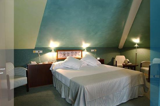 Hotel Los Jandalos Jerez: Superior Room
