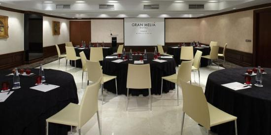 Gran Melia Fenix: Normal Melia Fenix Meetings
