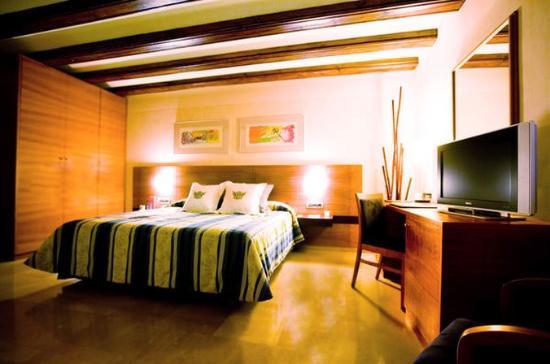 Palacio de Tudemir Boutique Hotel: Room
