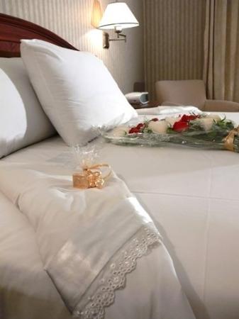 Hotel Dann Carlton Quito : Wedings Plan