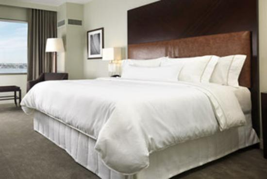 Hampton Inn Washington Dc Convention Center Bed Bugs