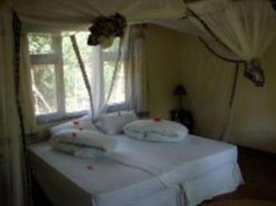 Moivaro Lodge: Room