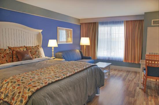 Watkins Glen Harbor Hotel: King Sofa