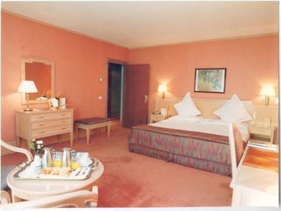 Hotel Roc de Caldes: Guest Room