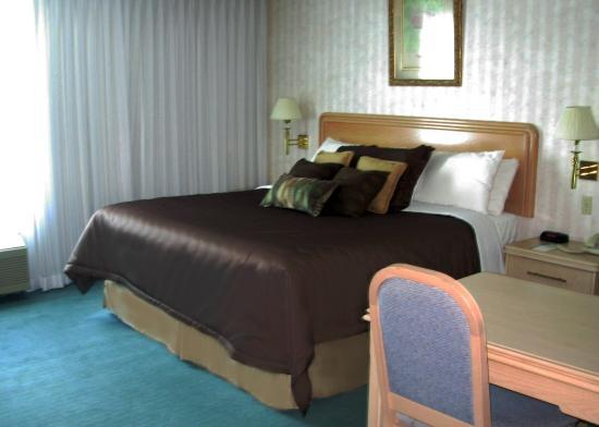 Rodeway Inn Fallsview: Guest Room