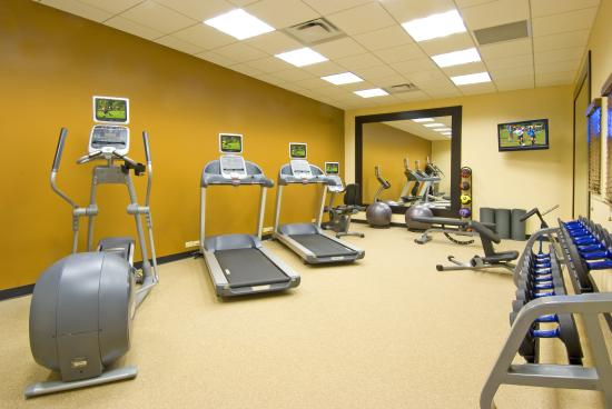 Hilton Garden Inn Tampa Airport Westshore: Fitness Room
