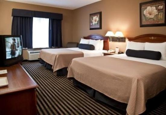 Mountain Inn & Suites: Guest Room