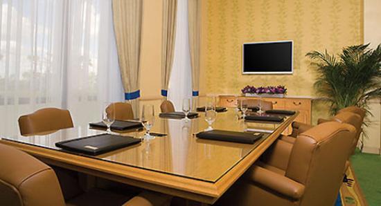 Wyndham Lake Buena Vista Disney Springs Resort Area: Meeting Room