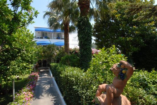Hotel 'A Pazziella: Garden