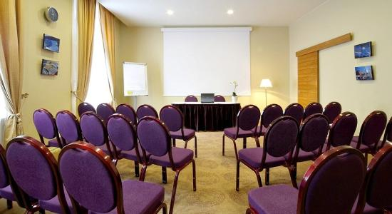 Opera Hotel & Spa: Conference Room