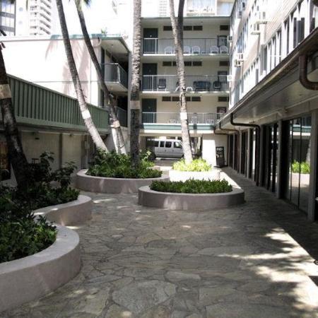 Kuhio Banyan Club : Exterior