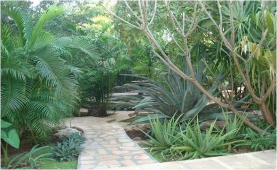 The Villa Merida: Gardens