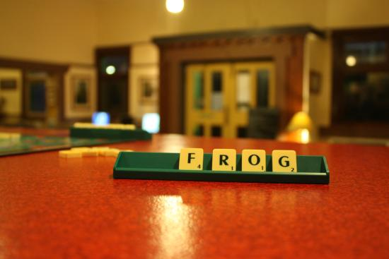 The Pickled Frog: Frog, a great hostel - and 9 points in Scrabble (not too bad)