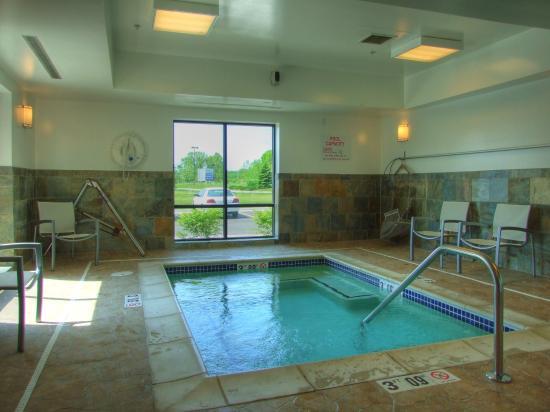 Hampton Inn Detroit / Utica - Shelby Township: Hot Tub