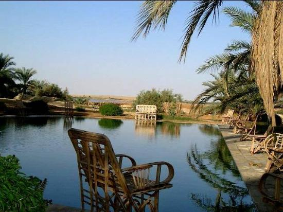 Adrere Amellal: Desert Ecolodge: Pool View