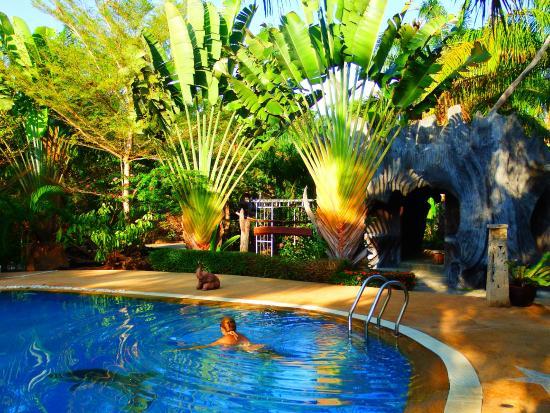 Nattha Waree Hot Spring Resort and Spa: Бассейн с минеральной водой