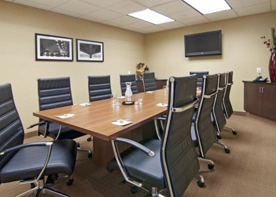 Holiday Inn Express & Suites Rogers: Meeting MNCHI