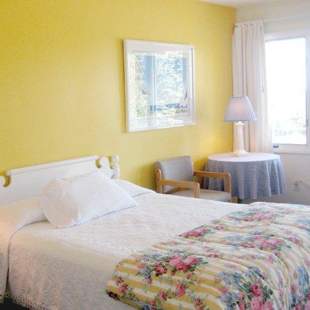 Bay Inn Petoskey: Guest Room