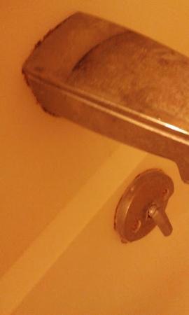 Red Roof Inn Binghamton North: The gross tub..