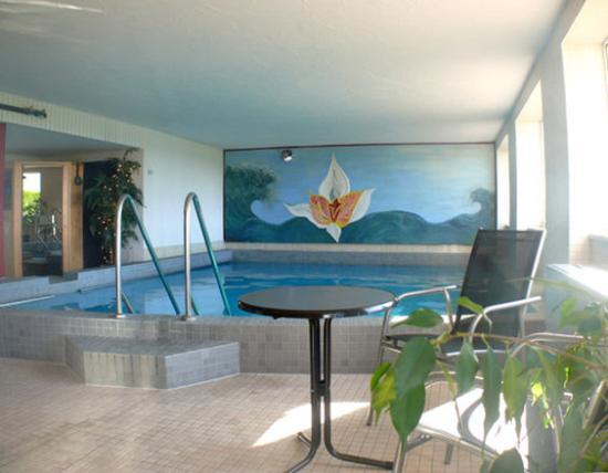 Wellness Hotel Park-Hill: TOP CCL Resort Hotel park-hill Lossburg_Pool