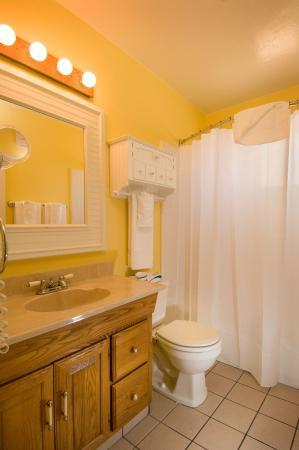 The Jackson Lodge : Cabin Bath