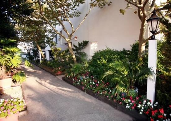 Barefoot Mailman: Landscaped Shaded Pet Walk Areas