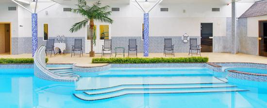 County Arms Hotel & Leisure Club: Pool View