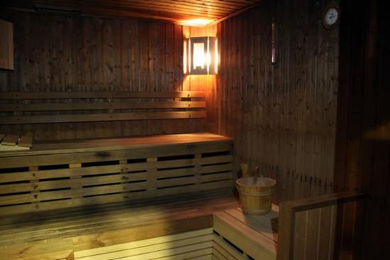 Welcome Hotel Apartment 2: Sauna