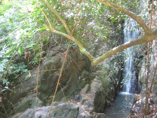 Khao Phra Thaeo National Park: Bang Pae Waterfall