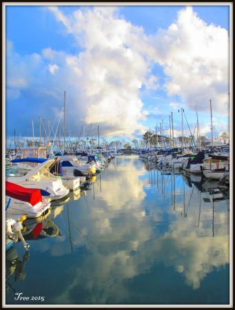 the harbor - Picture of Harbor Grill Restaurant, Dana Point