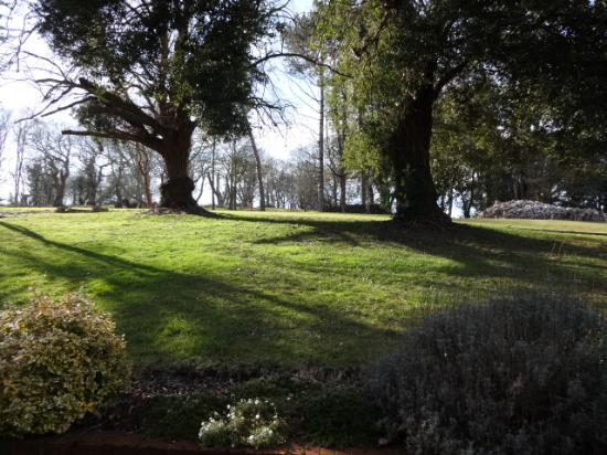 The Dales Country House Hotel : Access from our bedroom to the park!