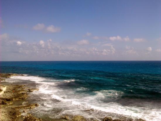 Piscina del rey picture of mia reef isla mujeres isla for Isla leon piscina