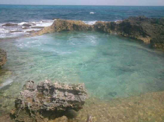 Piscina del rey foto di mia reef isla mujeres isla for Isla leon piscina