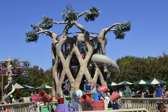 Circus tree at Gilroy Gardens Picture of Gilroy Gardens Family