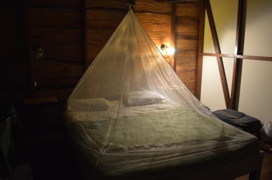 El Tucan Jungle Lodge: Habitacion