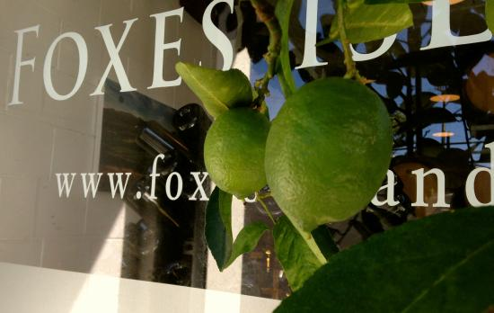 Foxes Island: Pampered Organic Limes @ the City Cellar