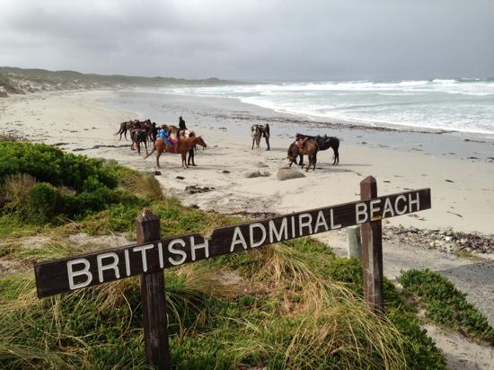 King Island Trail Rides: day 1