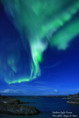 Northern Lights Tromso Tours Norway Top Tips Before