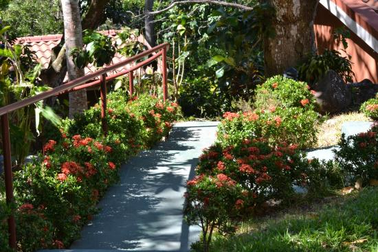 San Pablo, คอสตาริกา: terraced walk to cottages