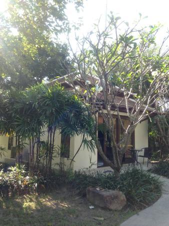 Dreams Villa Resort: Garden Villa
