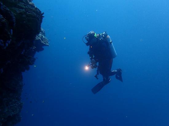 Lion Dive Centre