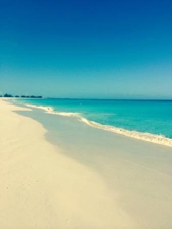 The Meridian Club Turks & Caicos : Typical scene on Pine Cay; beautiful beach, beautiful water