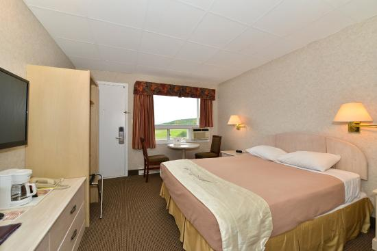Canada's Best Value Inn & Suites Woodstock : Guest Room