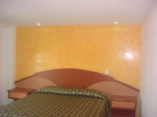 Hotel Plaza Garibaldi: Room
