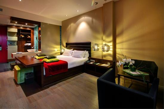 Olivia Plaza Hotel: Double Room