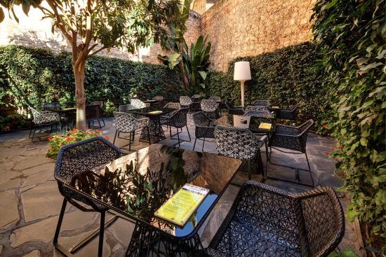 Olivia Plaza Hotel: Terrace