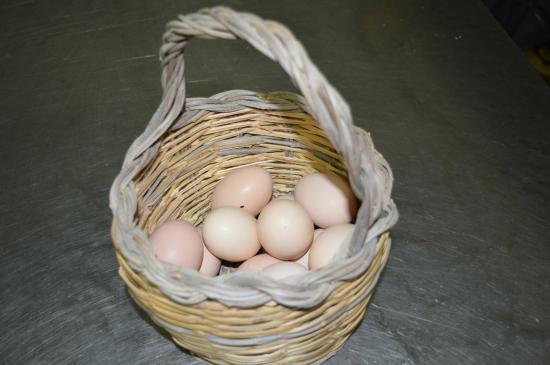 La Staccionata: Paniere di uova...