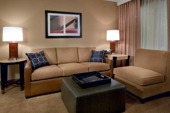 Embassy Suites by Hilton Chicago Downtown: Suite